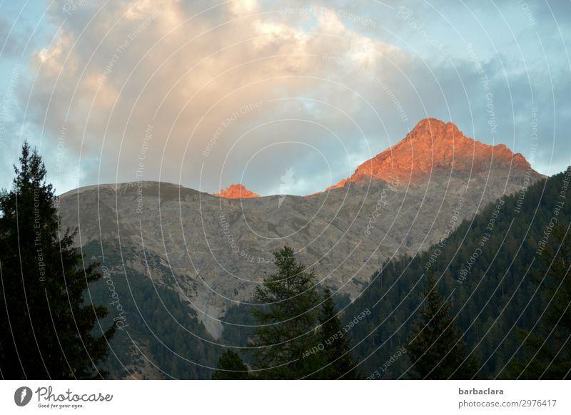 Alpenglühen im Engadin Ferien & Urlaub & Reisen Natur Landschaft Urelemente Himmel Wolken Sonne Wald Berge u. Gebirge Schweiz leuchten hoch rot Stimmung Klima