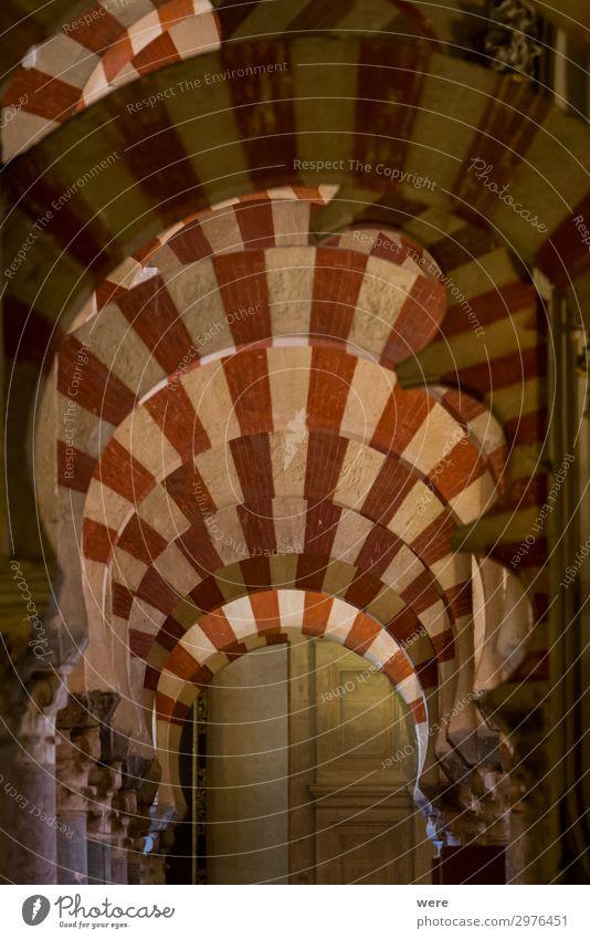Columns in the World Heritage Mezquita in Cordoba Religion & Glaube Kirche Kultur Sehenswürdigkeit