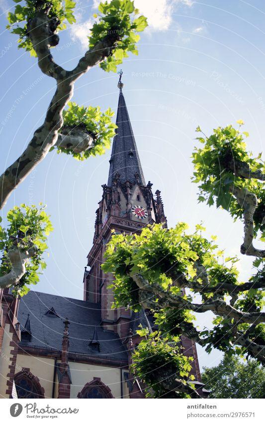 Kurz nach fünf Ferien & Urlaub & Reisen Natur Sommer grün Baum Freude Architektur natürlich Wege & Pfade Zeit Deutschland Tourismus Ausflug Zufriedenheit Uhr