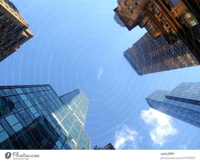 Froschperspektive... Himmel Schönes Wetter New York City USA Amerika Skyline Haus Hochhaus Bauwerk Architektur Fassade ästhetisch außergewöhnlich eckig