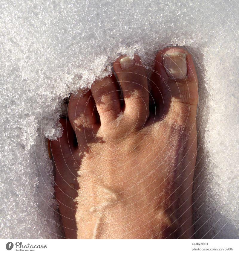 abkühlen... Mensch Fuß Zehen Schnee stehen Gesundheit kalt nackt Frost frieren Erholung Mut standhaft Eis Farbfoto Außenaufnahme Tag Vogelperspektive