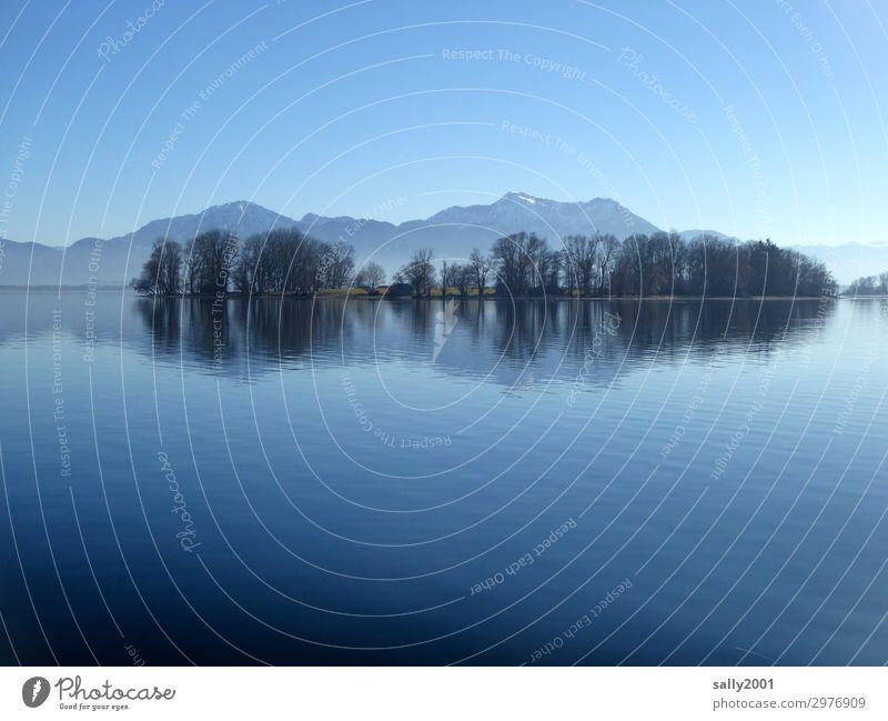 still... Natur Wolkenloser Himmel Winter Schönes Wetter Baum Berge u. Gebirge Alpen Kampenwand Seeufer Insel Chiemsee Bekanntheit kalt natürlich Gelassenheit