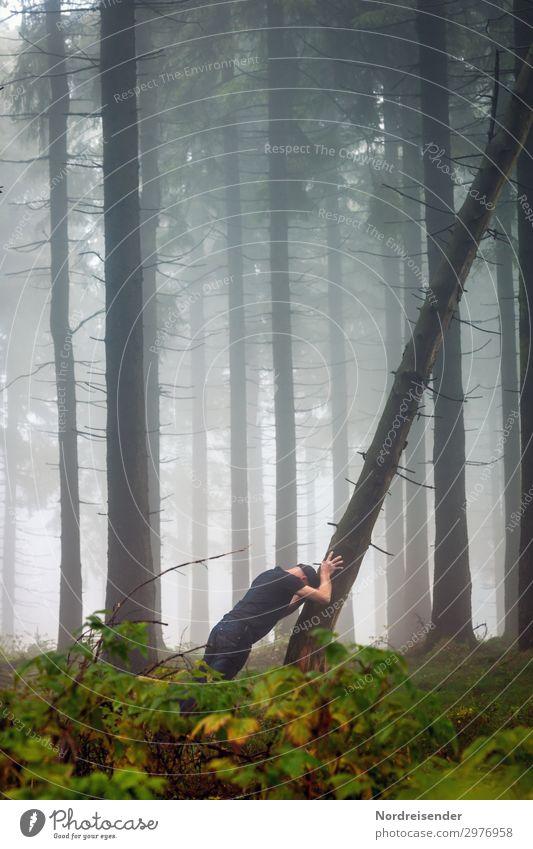 Die Kraft des Willens Ausflug Erfolg Mensch maskulin Mann Erwachsene Natur Nebel Baum Sträucher Wald T-Shirt Jeanshose Mütze kämpfen machen sportlich dunkel