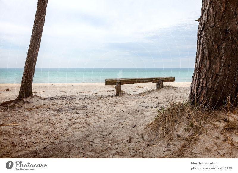 Idyllischer Platz am Weststrand harmonisch ruhig Meditation Ferien & Urlaub & Reisen Tourismus Sommer Strand Meer Natur Landschaft Wasser Baum Gras Nordsee