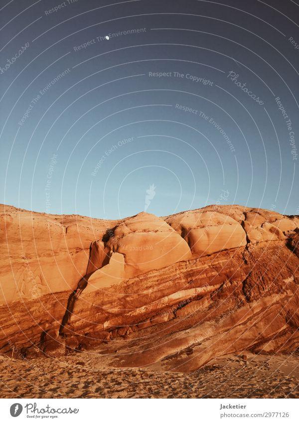 Timeline of Time Umwelt Natur Landschaft Pflanze Urelemente Erde Sand Luft Himmel Wolkenloser Himmel Stern Horizont Mond Sommer Herbst Klima Klimawandel Wetter