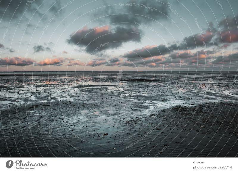 rømø | watt it´s like Himmel Natur Ferien & Urlaub & Reisen Wasser Landschaft Wolken Umwelt Ferne Freiheit Küste Horizont Luft Wetter Klima Insel Schönes Wetter