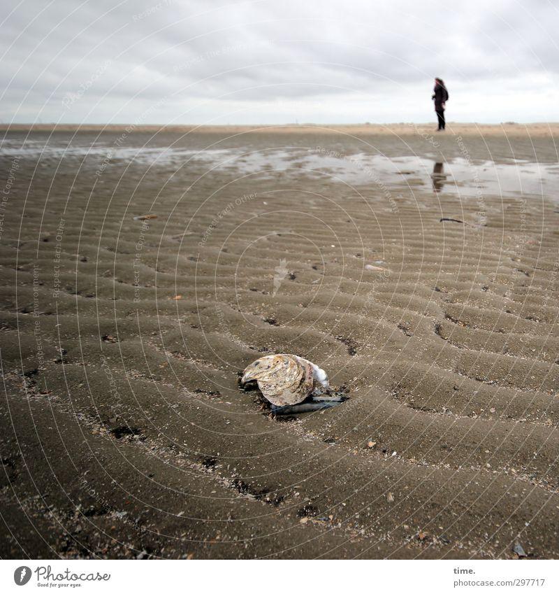Rømø | im-richtigen-moment am richtigen Ort Mensch Himmel Natur Ferien & Urlaub & Reisen Tier Wolken Strand Erholung Umwelt Wege & Pfade Freiheit Küste Horizont Zufriedenheit stehen Wandel & Veränderung