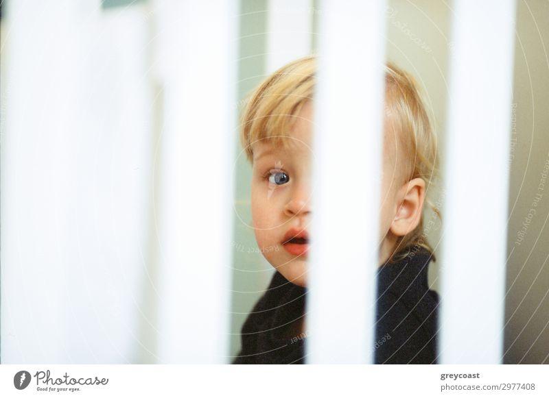 Nahaufnahme eines blauäugigen Babymädchens mit blondem Haar, Blick durch die Gitterstäbe des Kinderbettes Gesicht Kinderzimmer Mensch feminin Kleinkind Kindheit