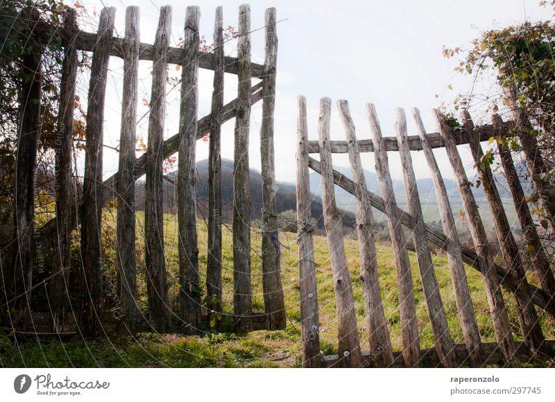 bleib draußen/komm rein Natur Ferien & Urlaub & Reisen Erholung Landschaft ruhig Berge u. Gebirge Frühling Gras Holz Garten Freiheit Feld Häusliches Leben offen