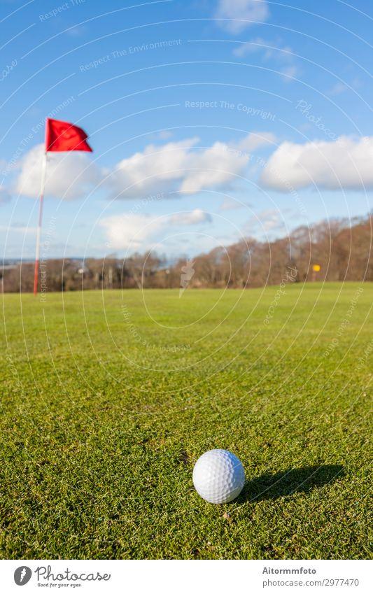 Golf grün Lifestyle schön Erholung Freizeit & Hobby Spielen Ferien & Urlaub & Reisen Sommer Sonne Club Disco Sport Erfolg Natur Landschaft Himmel Baum Gras