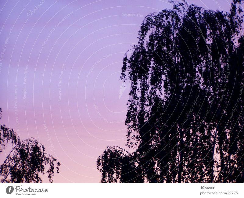 Westhagen brennt III Himmel Sonne Turm Abenddämmerung Farbverlauf Wolfsburg