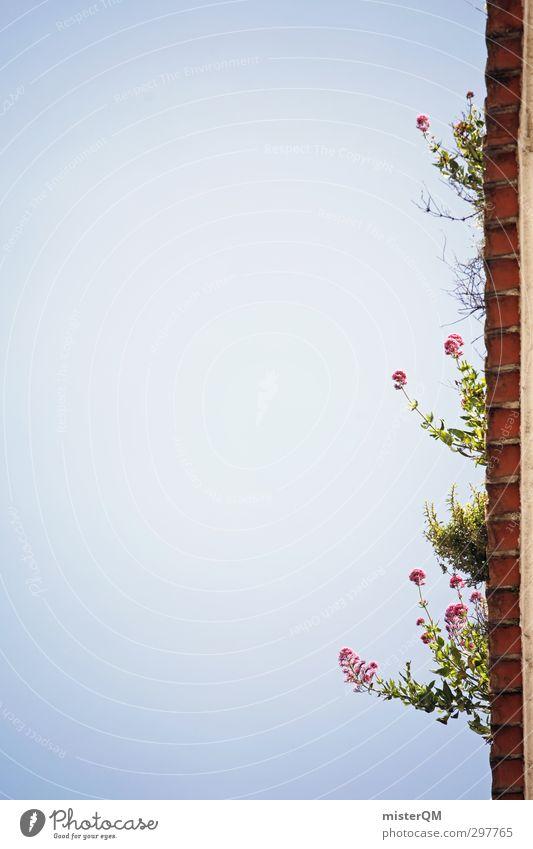 Lissabon's Dächer. Kunst ästhetisch Himmel (Jenseits) Dachrinne Blume oben Detailaufnahme Sommer Unkraut Farbfoto Gedeckte Farben Außenaufnahme Experiment