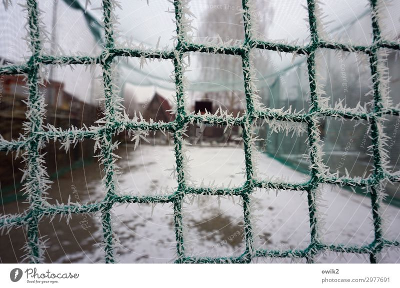 Kühlbox Sport Sportstätten Sportplatz Basketballplatz Himmel Winter Nebel Eis Frost Schnee Baum Netz Seil gespannt Kunststoff kalt Spitze stachelig Schutz