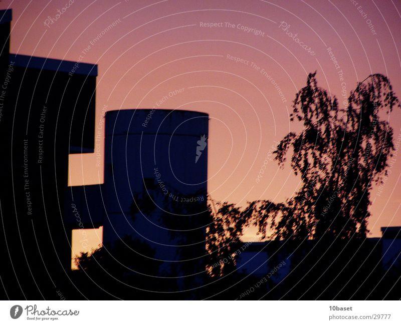 Westhagen brennt I Sonnenuntergang Dämmerung Plattenbau Wolfsburg Architektur Turm Abenddämmerung Abendröte Himmel