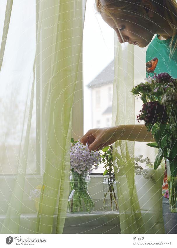 Die Gärtnerin Dekoration & Verzierung Mensch Junge Frau Jugendliche 1 18-30 Jahre Erwachsene Blume Blüte Topfpflanze Blühend Duft schön Gefühle Stimmung ruhig