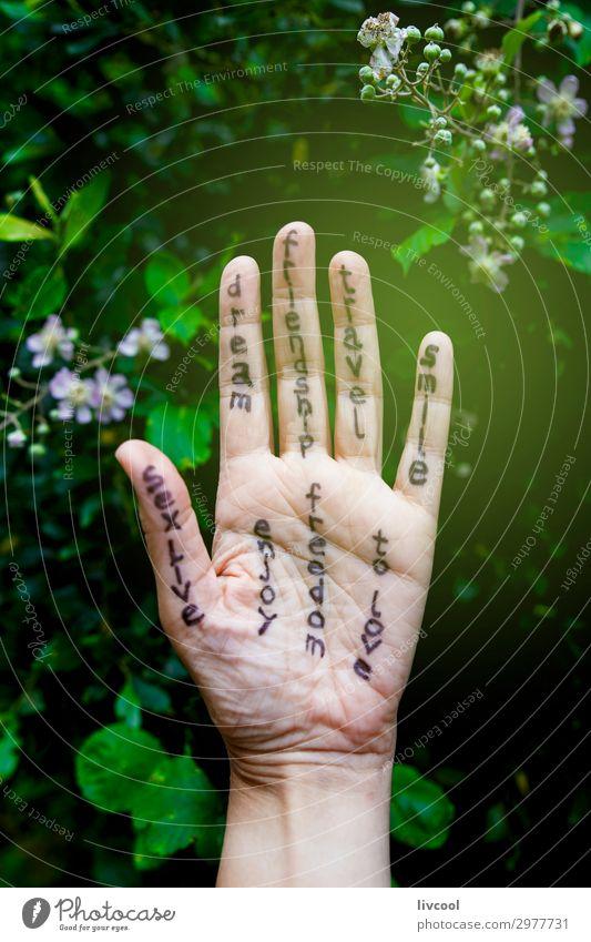 Mensch Ferien & Urlaub & Reisen Natur schön grün Hand Baum Blume Blatt Lifestyle Gefühle Kunst Freiheit Freundschaft Körper träumen