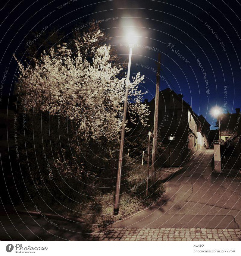 Schmal und steil Wolkenloser Himmel Nachthimmel Baum Sträucher Reudnitz Thüringen Deutschland Dorf bevölkert Haus Gasse Straßenbeleuchtung leuchten dunkel ruhig