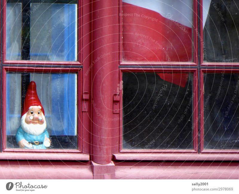 Aufpasser... Frankreich Haus Fenster Sprossenfenster beobachten Blick stehen warten Freundlichkeit klein Originalität klug rot Erwartung Identität Kitsch