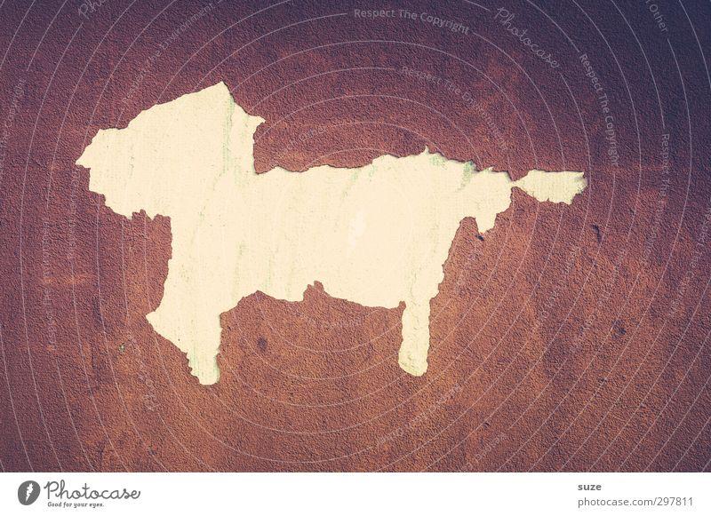 Der tut nix Hund alt weiß Tier Wand Mauer lustig Gebäude braun Fassade trist authentisch kaputt einfach Vergänglichkeit trocken