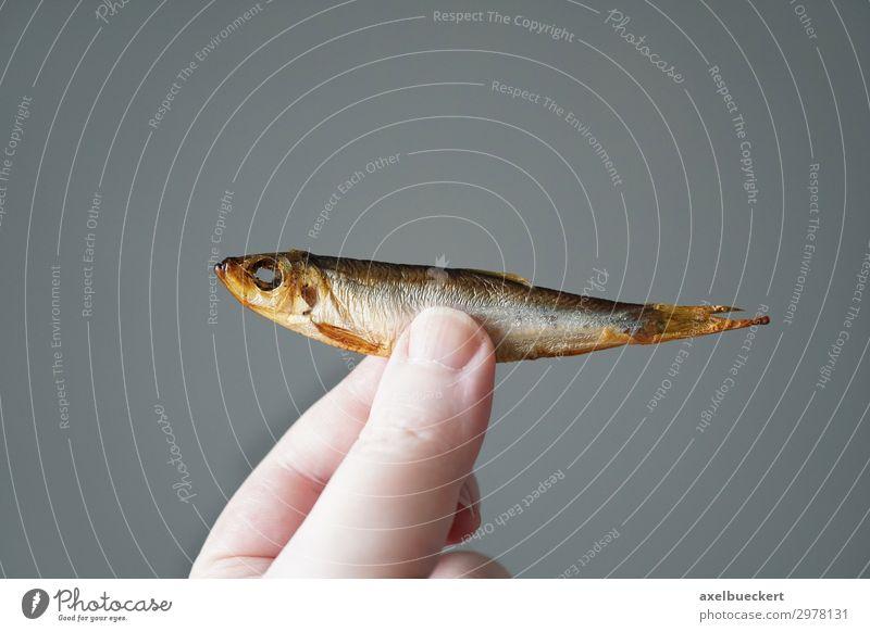 Kieler Sprotte Lebensmittel Fisch Ernährung Hand Finger 1 Mensch festhalten Deutschland Snack Essen zubereiten Feinschmecker sprotte kieler sprotte Räucherfisch