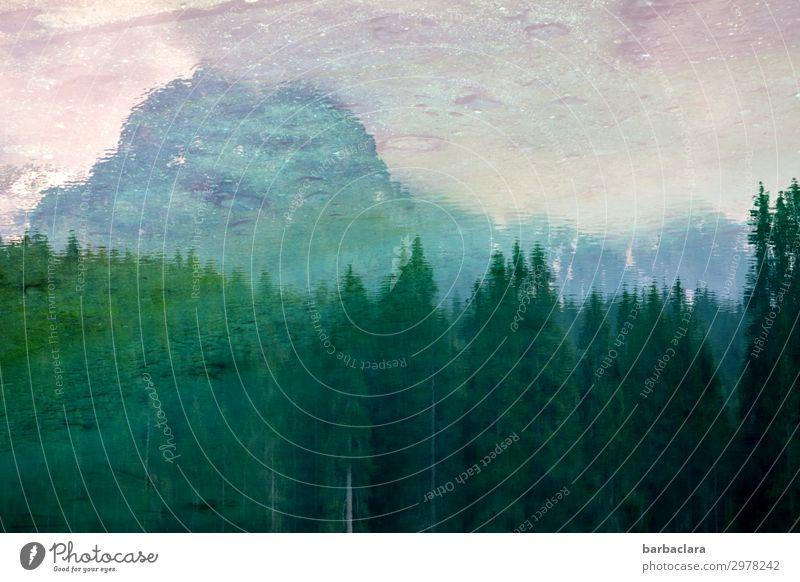 Der Latemar spiegelt sich im Karersee Himmel Ferien & Urlaub & Reisen Natur Farbe Wasser Landschaft Wald Berge u. Gebirge Umwelt außergewöhnlich See Stimmung