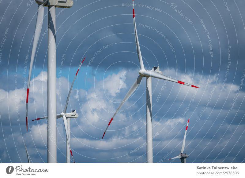 Natur blau weiß Landschaft rot Wolken Umwelt Frühling grau Park Energiewirtschaft Technik & Technologie ästhetisch Wind Industrie Klima