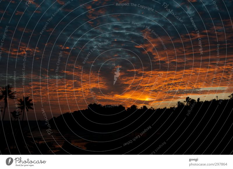 Trittst im Morgenrot daher, ... Umwelt Landschaft Himmel Wolken Horizont Sonne Sonnenaufgang Sonnenuntergang Sonnenlicht Pflanze Palme Küste Bucht Meer Insel