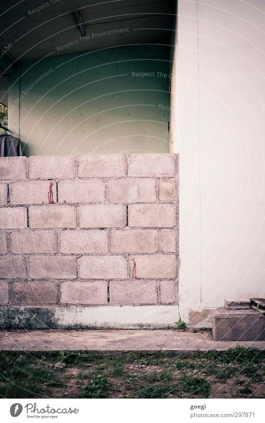 Pfusch Gras Haus Einfamilienhaus Mauer Wand Dach Arbeit & Erwerbstätigkeit bauen einfach Billig trist grau grün weiß Heimwerker Backstein Backsteinwand