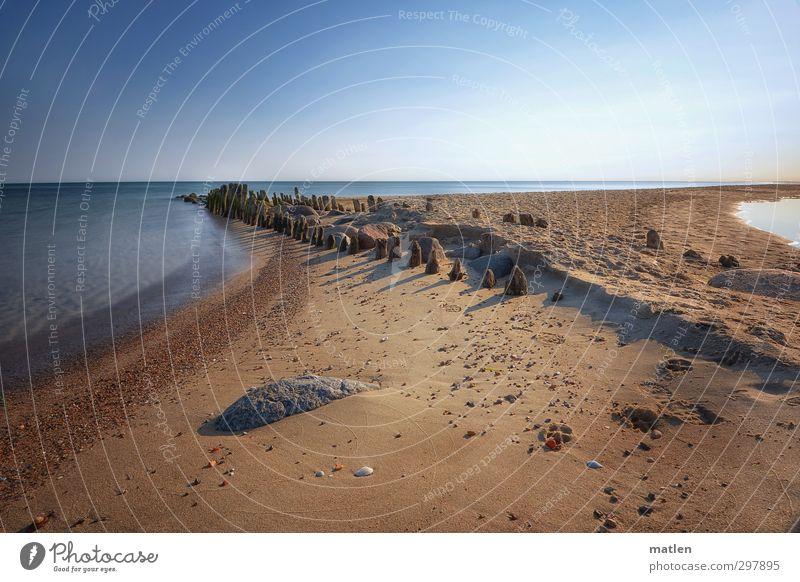 mattinale Natur Landschaft Erde Sand Himmel Wolkenloser Himmel Horizont Sonne Wetter Schönes Wetter Küste Strand Ostsee Menschenleer blau braun Holzpfahl Stein