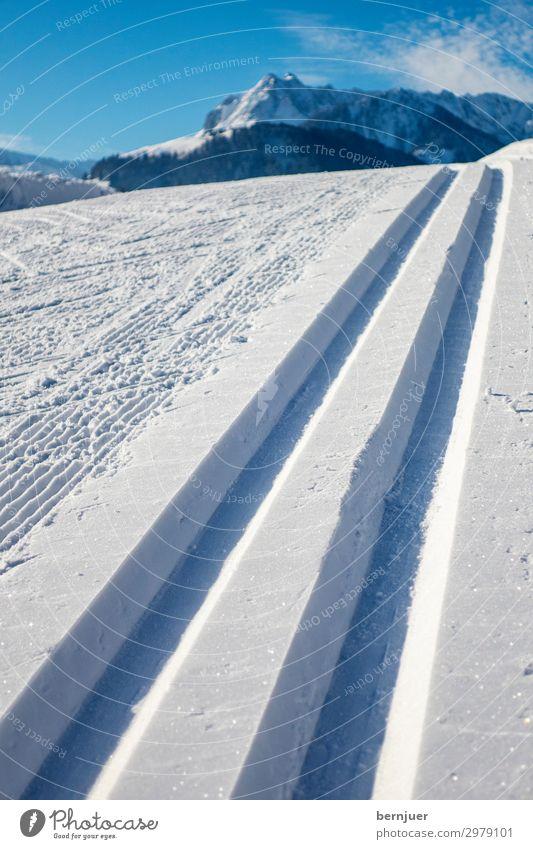 Langlaufloipe Lifestyle Erholung Freizeit & Hobby Ferien & Urlaub & Reisen Abenteuer Sonne Winter Sport Natur Landschaft Wald Hügel Alpen Fitness kalt wild blau