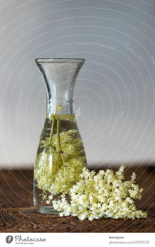 Holler Getränk Erfrischungsgetränk Limonade Saft Flasche Medikament Sommer Blüte Flüssigkeit kalt lecker saftig gelb grün weiß Holundersaft Bio Zitrusfrüchte