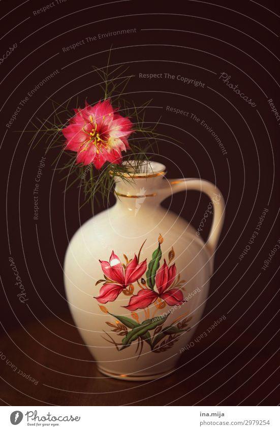 _ Natur Sommer Pflanze Blume Blüte Wildpflanze Schwarzkümmel Heilpflanzen Dekoration & Verzierung Kitsch Krimskrams Souvenir Sammlerstück Vase rosa Duft elegant