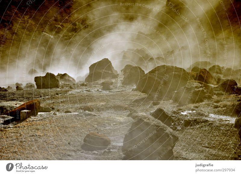 Island Natur Landschaft Umwelt natürlich braun Felsen Stimmung außergewöhnlich wild Erde Urelemente heiß Island Wasserdampf Vulkan Endzeitstimmung