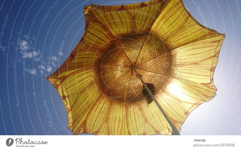 Sonnenblumensonnenschirm Sommer Urlaub Urlaubsstimmung Himmel heiß Sonnenschirm erholen Ferien & Urlaub & Reisen Sommerferien Sonnenlicht Schönes Wetter