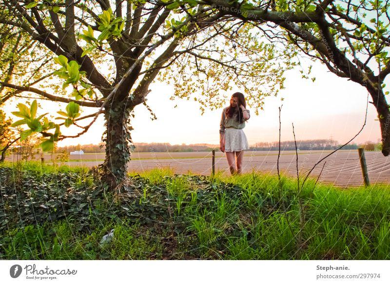 Mr. Sun, please don't go away feminin Junge Frau Jugendliche 1 Mensch 13-18 Jahre Kind Landschaft Frühling Schönes Wetter Baum Efeu Feld Rock langhaarig