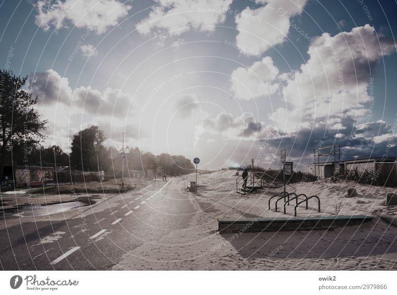 Küstenstreifen Umwelt Natur Himmel Wolken Schönes Wetter Baum Sträucher Strand Ostsee Straße leuchten hell Horizont Idylle Ferne Sand Fahrradständer