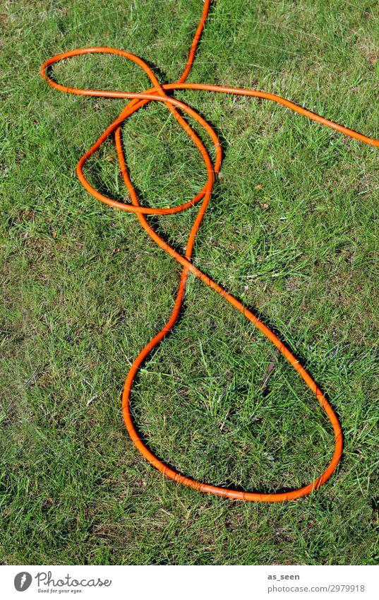 Gartenschlauch Umwelt Natur Landschaft Pflanze Erde Sommer Klima Klimawandel Schönes Wetter Dürre Gras Rasen Knoten liegen authentisch frech Fröhlichkeit