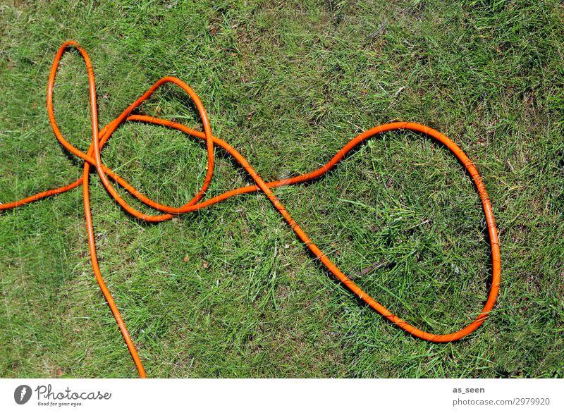 Gartenschlauch II Umwelt Natur Pflanze Erde Wasser Sommer Gras Rasen Park Wiese Knoten liegen authentisch frech grün orange Frühlingsgefühle Tatkraft Farbe