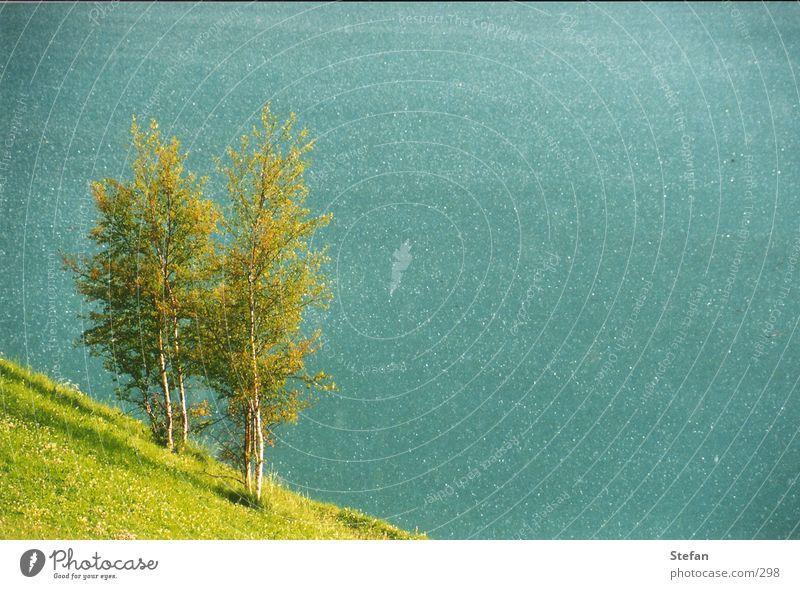 green green grazz Wasser Himmel Baum grün See Wellen Wind Alpen türkis Italien Stausee Südtirol