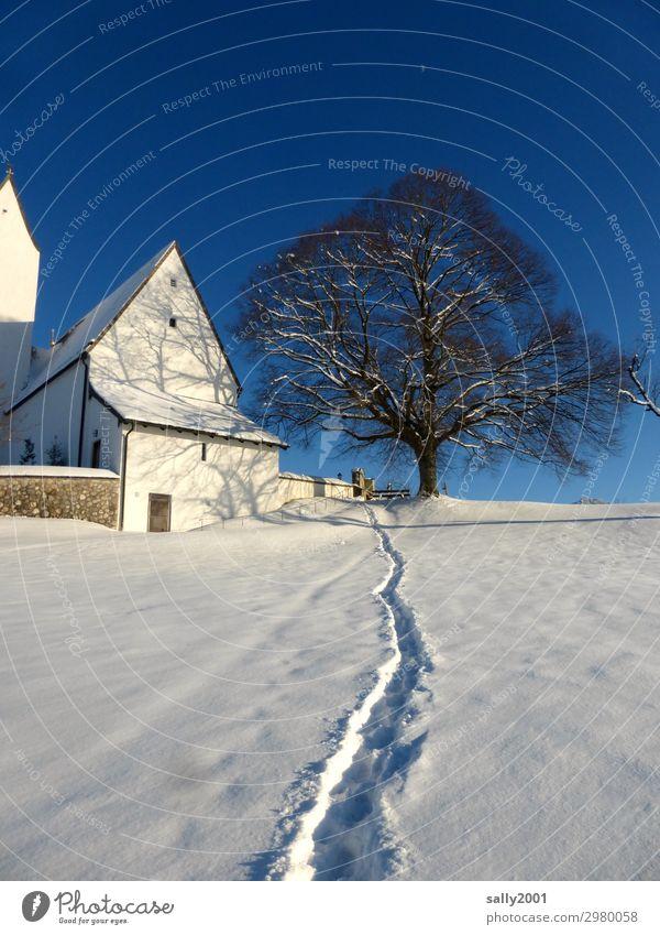 Winterpfad... Schönes Wetter Schnee Baum Alpen Berge u. Gebirge Samerberg Bayern Kirche Wege & Pfade ästhetisch frisch kalt weiß Zufriedenheit Einsamkeit
