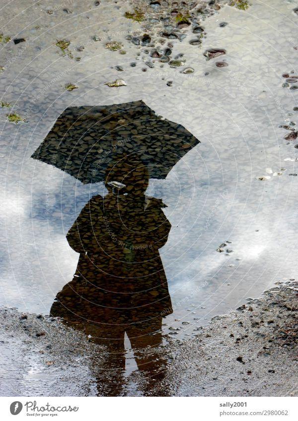 Mit Schirm (Charme und Melone...) Mensch feminin 1 dreckig kalt nass Regenschirm Pfütze Asphalt Stein Schlamm Reflexion & Spiegelung Farbfoto Gedeckte Farben