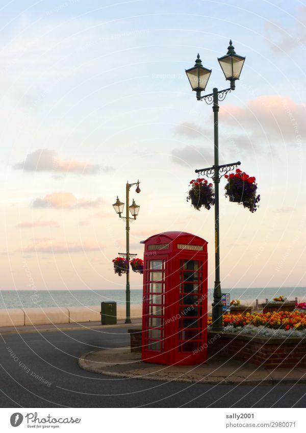 Brexit is done... England Telefonzelle rot britisch englisch Tradition Telekommunikation Großbritannien Kommunizieren retro Meer Küste Blumen Blumenschmuck