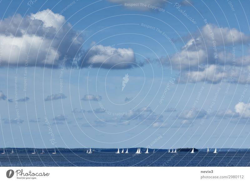 Segelschiffe unter blauem Himmel Landschaft Wolken Schönes Wetter Wellen Küste Meer Wolkenhimmel Segeln Segelboot Segeljacht Segelurlaub schön Wasserfahrzeug