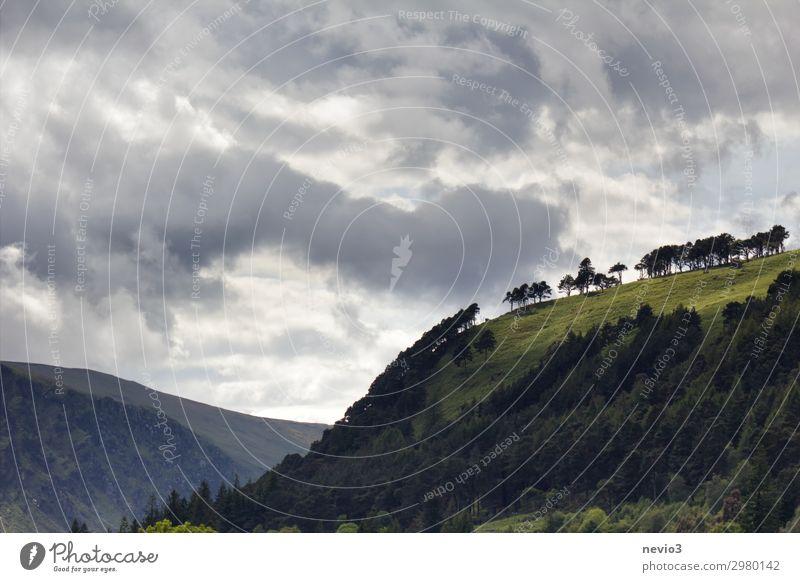 Glendalough in Irland irisch Kulturlandschaft Kloster Klostergarten Hang Hügel hügelig grün Grünland Gras bewaldet bewaldeter Hügel dramatischer Himmel Wetter