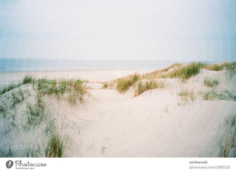 Sandige Düne Wellness Wohlgefühl Zufriedenheit Ferien & Urlaub & Reisen Ausflug Sommerurlaub Umwelt Natur Wolken Wetter Pflanze Sträucher Wellen Küste Strand