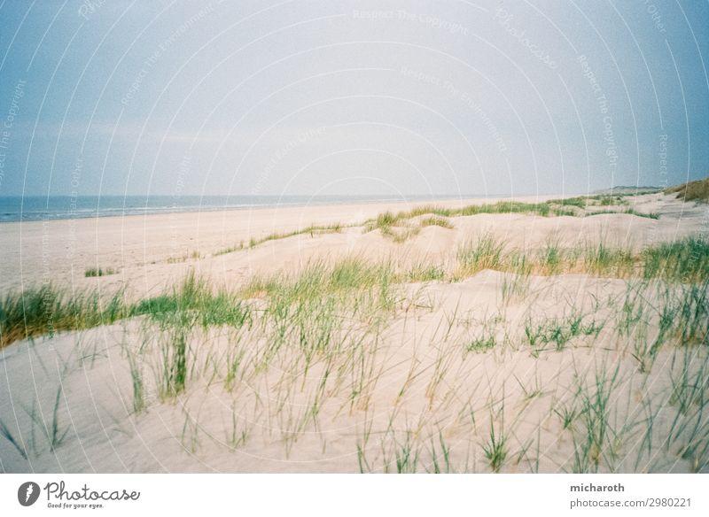 Dünen und Strand schön Gesundheit Gesundheitswesen Behandlung harmonisch Wohlgefühl Zufriedenheit Erholung Ferien & Urlaub & Reisen Freiheit Sommerurlaub Umwelt