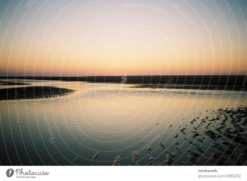 Sonnenuntergang bei Ebbe Ferien & Urlaub & Reisen Tourismus Ausflug Abenteuer Freiheit Kreuzfahrt Sommerurlaub Umwelt Natur Landschaft Klima Schönes Wetter