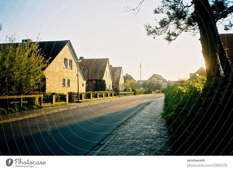 Sonnenstraße Gesundheit Zufriedenheit Erholung Ferien & Urlaub & Reisen Sommerurlaub Umwelt Natur Wolkenloser Himmel Schönes Wetter Pflanze Gras Sträucher