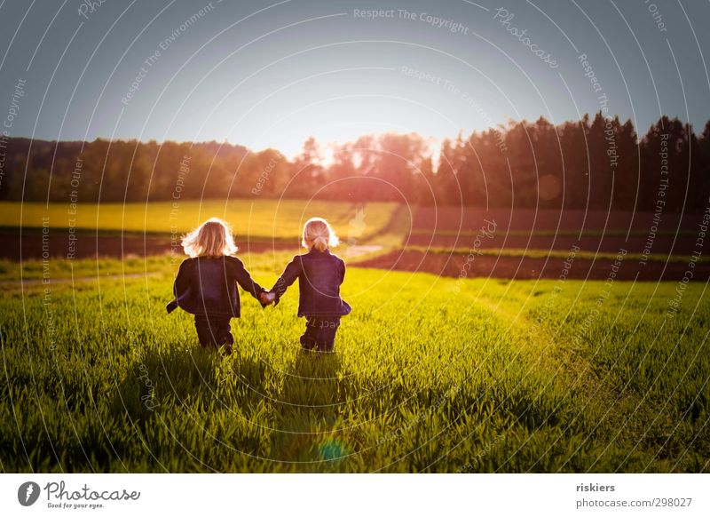 kleine seelenverwandte Mensch feminin Kind Mädchen Geschwister Schwester Kindheit Leben 2 3-8 Jahre Natur Frühling Sommer Schönes Wetter Wiese Feld gehen frei
