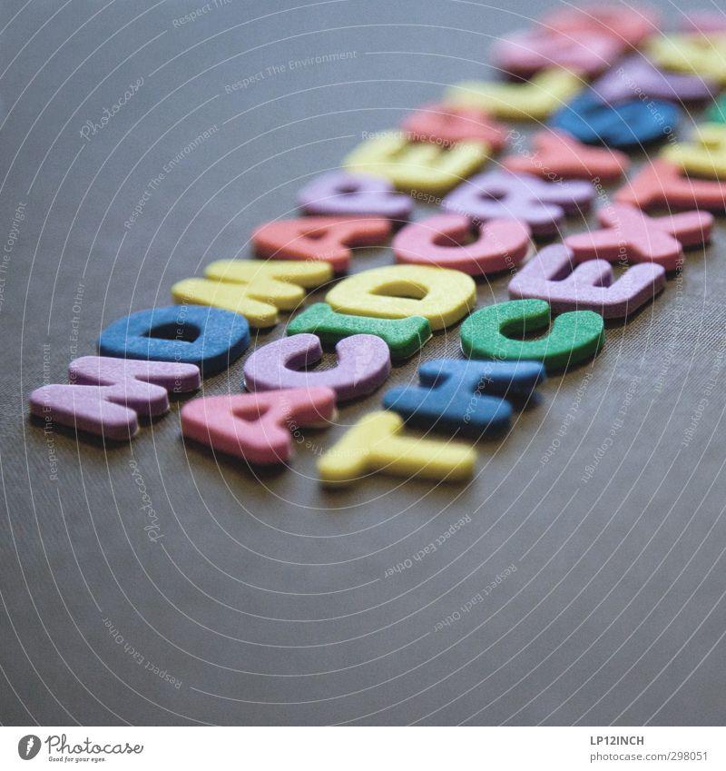 ACID. Natur Ferien & Urlaub & Reisen Pflanze Erholung lachen Glück Feste & Feiern Party Gesundheit fliegen Lifestyle gefährlich Schriftzeichen kaufen genießen